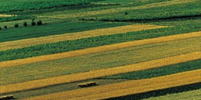 【张北草原图片】张北县风景图片_旅游景点照片_途牛