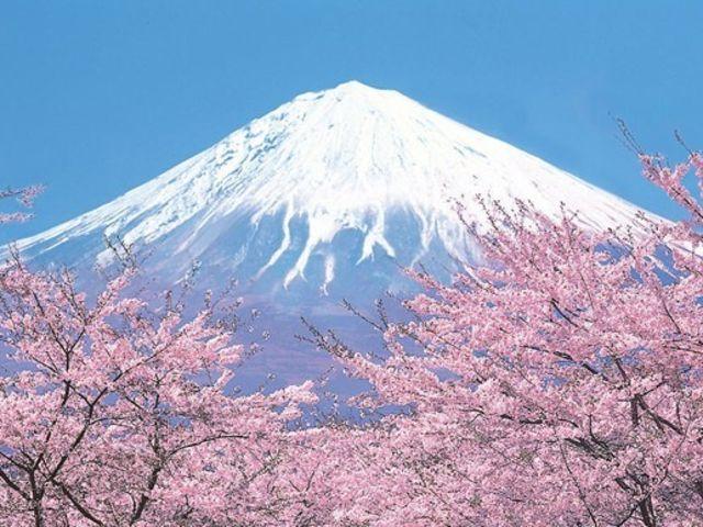 <富士山24h游>东京往返,1人起发,铁定成团,赠送一晚酒店,享正宗日式泡汤,畅玩富士山景点,奥特莱斯畅购