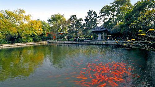 花,港,鱼为特色的风景点.西湖十景之一.地处苏堤南段西侧.