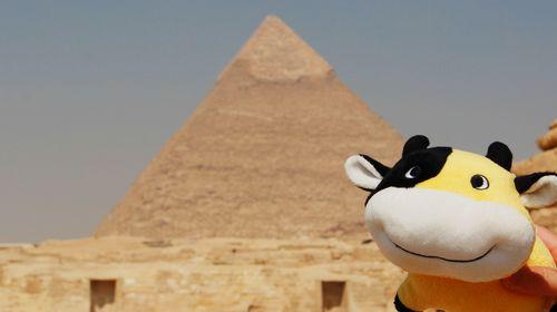 代表着古埃及文明的胡图片