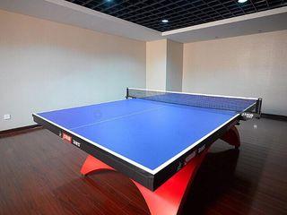 室内乒乓球馆(价格现询)图片