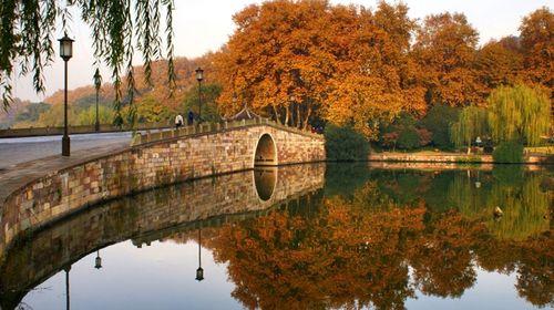 西湖的美景不仅春天独有,夏日里接天莲碧的荷花,秋夜中浸透月光的