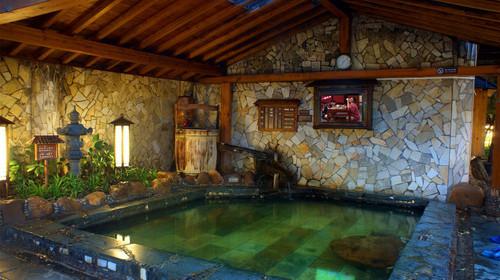 家庭小型温泉池设计图