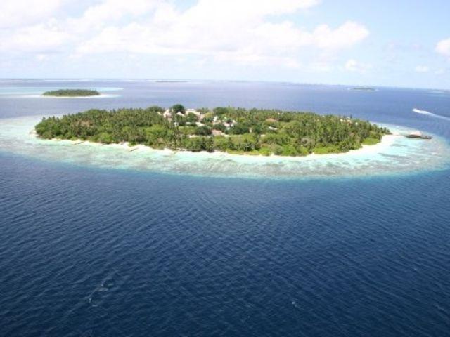 <马尔代夫班度士岛BandosIsland4晚单酒店>浮潜环境佳,葱郁植被覆盖,含小交通