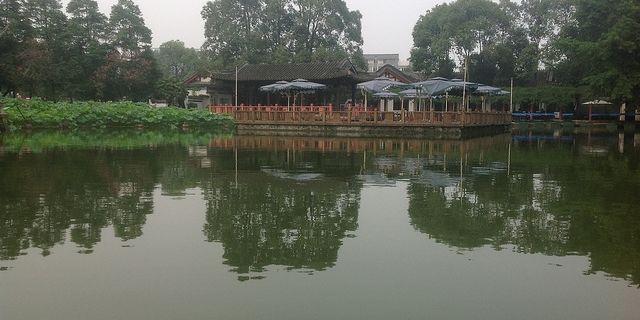临邑县风景图片