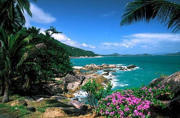 去泰国免筺(Y_泰国资讯攻略 泰国旅游的线路_泰国购物体验_泰国旅游攻略  免责声明