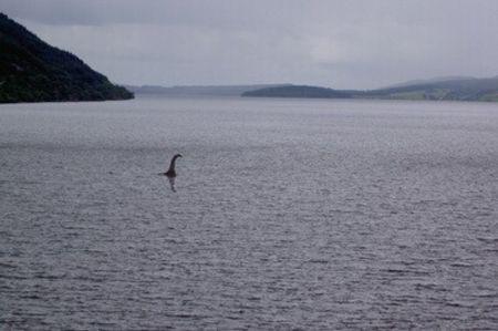 <英国-苏格兰高地天空岛2晚3日游>罗蒙湖/尼斯湖/苏格兰高地/天空岛/圣安德鲁斯爱丁堡格拉斯哥集散(当地游)
