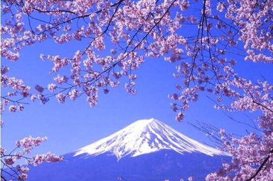 旅行东京最佳旅游时间_旅行东京必去景点_旅