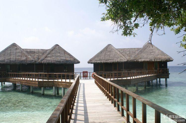 岛上一共只有2间水上屋,听说这个岛是马尔代夫原来的副总统