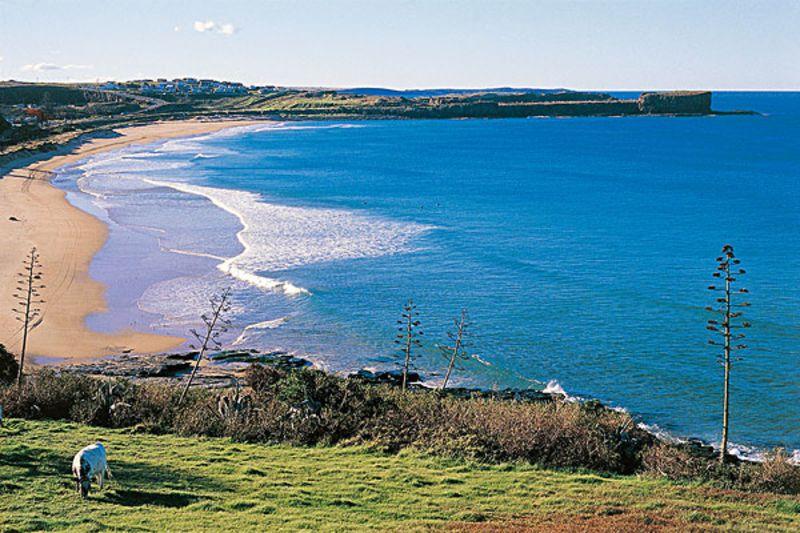 澳大利亚旅游景点有哪些_澳大利亚有哪些历史故事_澳大利亚旅游可去景