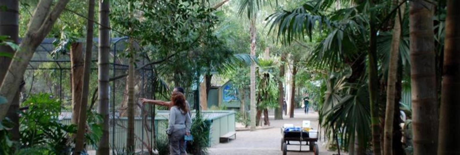 翎羽谷野生动物园旅游攻略