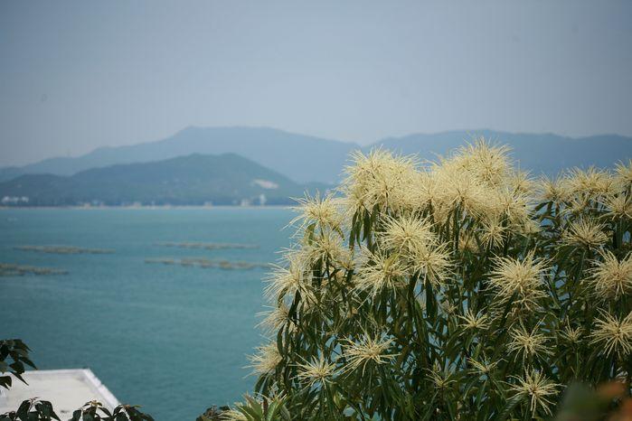 徒步穿越七星湾―桔钓沙海岸线