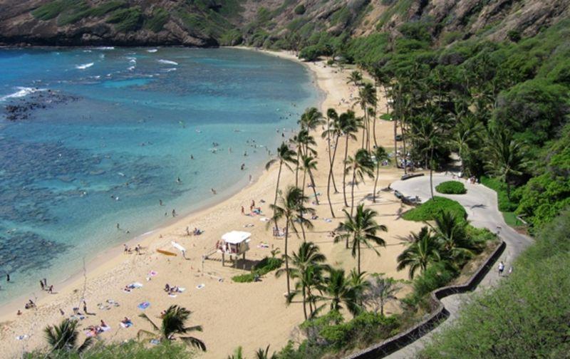 夏威夷檀香山景點-夏威夷檀香山之旅  檀香山是夏威夷的首府,也是夏威夷非常著名的旅游景點,這里常年氣溫溫和,是一個度假旅游的好地方。但是夏威夷檀香山景點都有哪些呢?這是很多游客想要知道的,接下來就帶您走進夏威夷檀香山,欣賞這里優美的風景,翠綠的樹木,呼吸這里新鮮的空氣,讓您盡情的放松。  帶您走進火奴魯魯  來到夏威夷檀香山可一定不要錯過火奴魯魯,火奴魯魯是夏威夷的首府,也是檀香山*的城市。火奴魯魯距離威基基海灘非常近,走進火奴魯魯,您可以來威基基海灘的海水中游泳,那里的海水非常溫暖,您也可以在海中沖