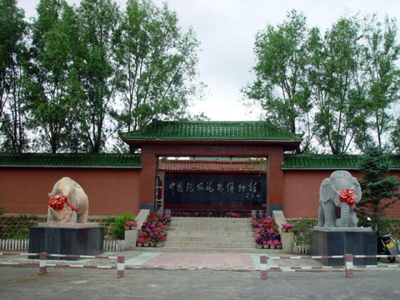 乾安县图片_乾安县旅游图片图片