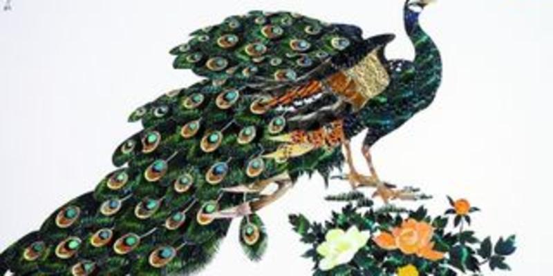 推荐理由 217人推荐 以蝴蝶翅膀为主要材料,利用其独特的花纹