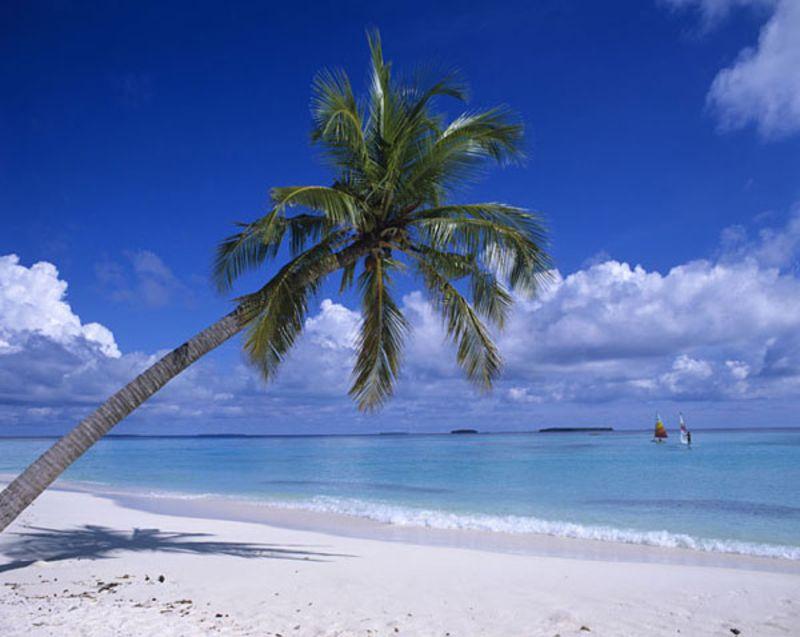 马尔代夫蓝色美人蕉岛攻略_异国情调的美丽岛屿_马尔代夫攻略