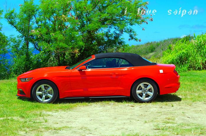 我们订了量橘红色的2015款福特野马,100多美元的租车费跟国内比倒也