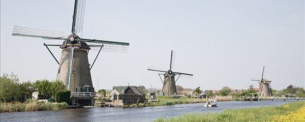 荷兰鹿特丹攻略_鹿特丹旅游景点_鹿特丹v攻略鄱阳湖花海一日游的攻略图片