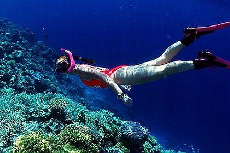 <海南三亚4日游>连住180度海景房,畅游蜈支洲岛(4小时)观108米海上观音,含280元/人拉斯维加斯表演秀,含潜水,不推自费