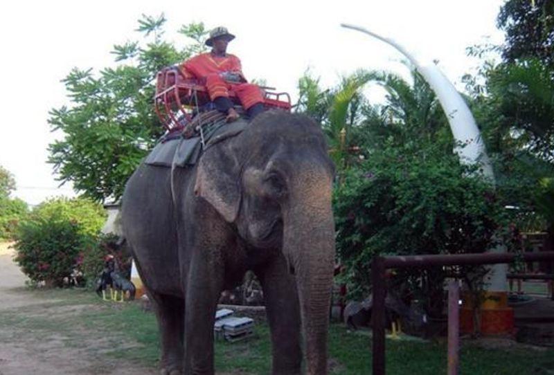 几月份去泰国旅游好_浪漫的泰国之旅_泰国旅