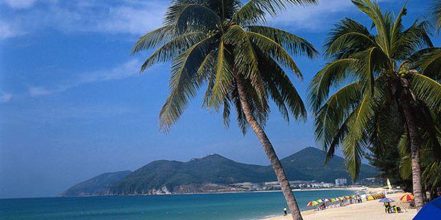 又是一个岛海南岛为什么叫椰子之乡因为海南岛盛产椰子,椰子树较多
