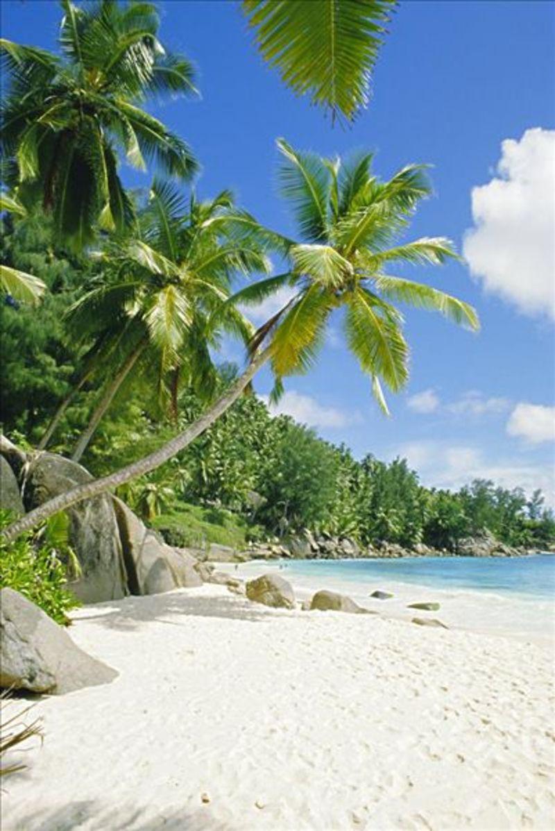 塞舌尔是个旅游胜地,早就听身边的朋友说起它的美,只是没有时间去领略一番。公司最近组织去塞舌尔出游,终于有机会实现愿望了。那么到塞舌尔旅游价格是怎样的呢?我特地进行了一番调查。  塞舌尔简介  塞舌尔是印度洋中的一个国家,由多个群岛组成,这里的每个岛屿都非常漂亮且很有特色。近年来,塞舌尔很注重发展旅游业,已经成为其第一大产业。这里有很多好玩的岛屿,比如伊格小岛上有五彩的贝壳,深受女孩子们的欢迎,孔森岛上居住着许多鸟雀,环境非常优美。塞舌尔属于热带雨林气候,没有明显的冬季,平均温度在25度左右,在这里没有明显