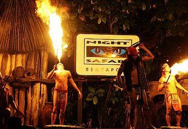 夜间野生动物园2