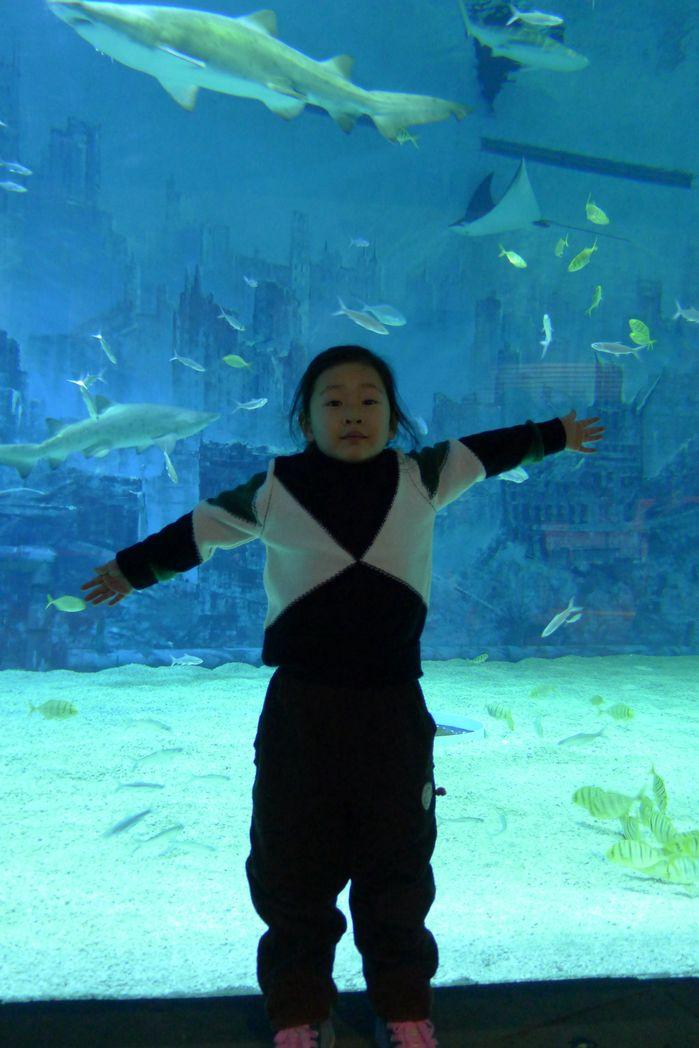 北京动物园之海洋馆
