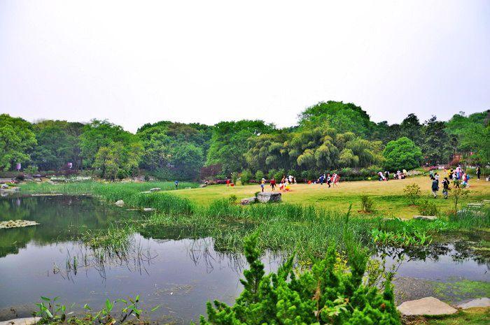 草地上,湖水边,花丛中到处都是观景和拍照的游人.