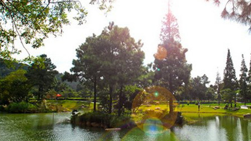 [国庆] 李中水上森林-常熟-荡口3日游>纯玩,含门票,酒店赠早!图片
