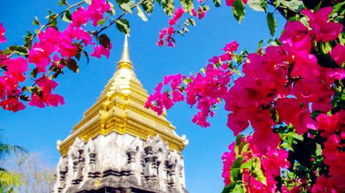 泰国-清迈4晚5日游