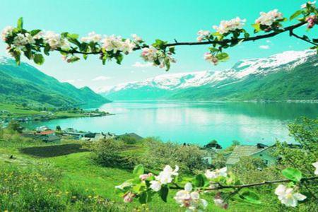 [五一]<北欧冰岛+挪威+瑞典+丹麦+芬兰13-15日游>25人团,冰岛三/四晚,家族酒店,邮轮2人舱,双峡湾,内陆加飞,游船,自由活动