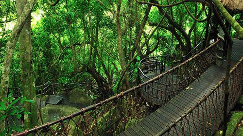 雨林热水宝电路图