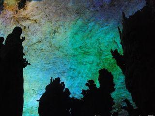 老寿星素描图_南极仙翁图片图片展示_南极仙翁图片相关图片下载