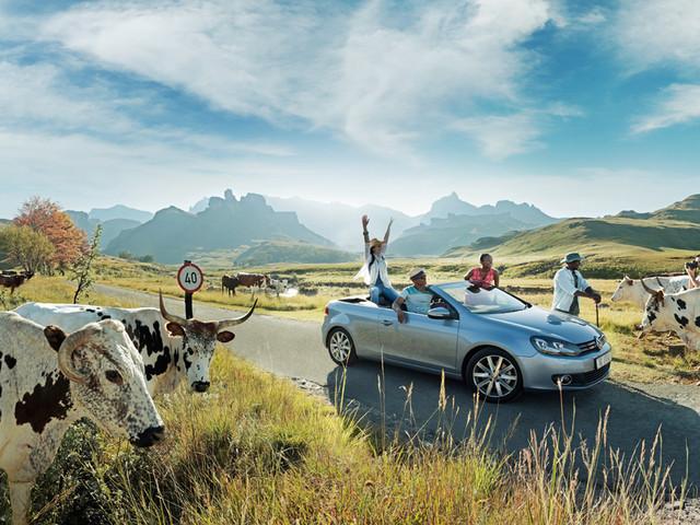南非醉爱8日游>深起港止/恩塔贝尼动物园/越野车safari野生动物追逐