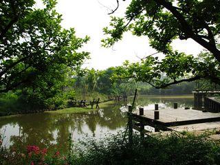 西溪湿地二期