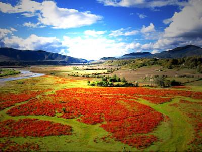 公园,国家5a级旅游风景区,位于云南省迪庆藏族自治州香格里拉市境内