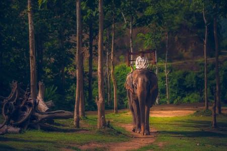 [元宵]<老挝-万象-南俄湖-万荣5或6日游>升级1晚泳池酒店,1个老挝特色餐,B线升级琅勃拉邦,千年布施,瀑布跳水
