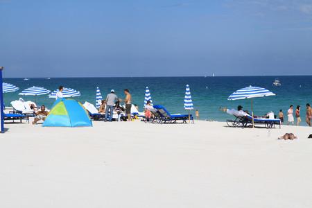 <迈阿密+美东8晚9日游>(当地参团)体验草上飞风力船,西棕榈滩悠闲漫步,雄师王国野生动物园
