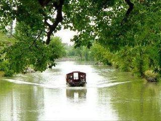 """西溪湿地 有""""杭州三西"""""""