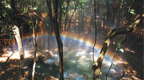 森林彩虹简笔画
