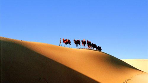 沙漠骆驼简笔画图