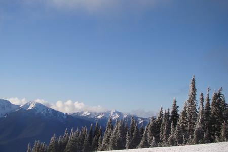 <美国奥林匹克国家公园激情一日当地游>西雅图出发,轻松惬意,享受悠闲旅行时光