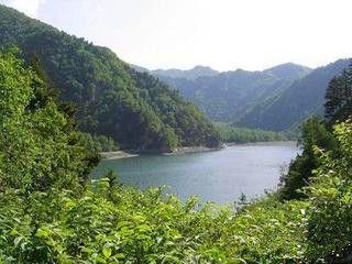 西宁到西双版纳旅游线路(图10) 神奇独特的热带雨林自然风光,图片