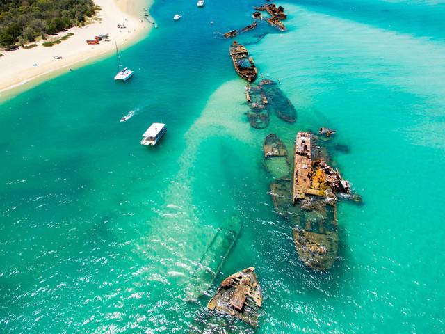 澳大利亚 莫顿岛(又名海豚岛)