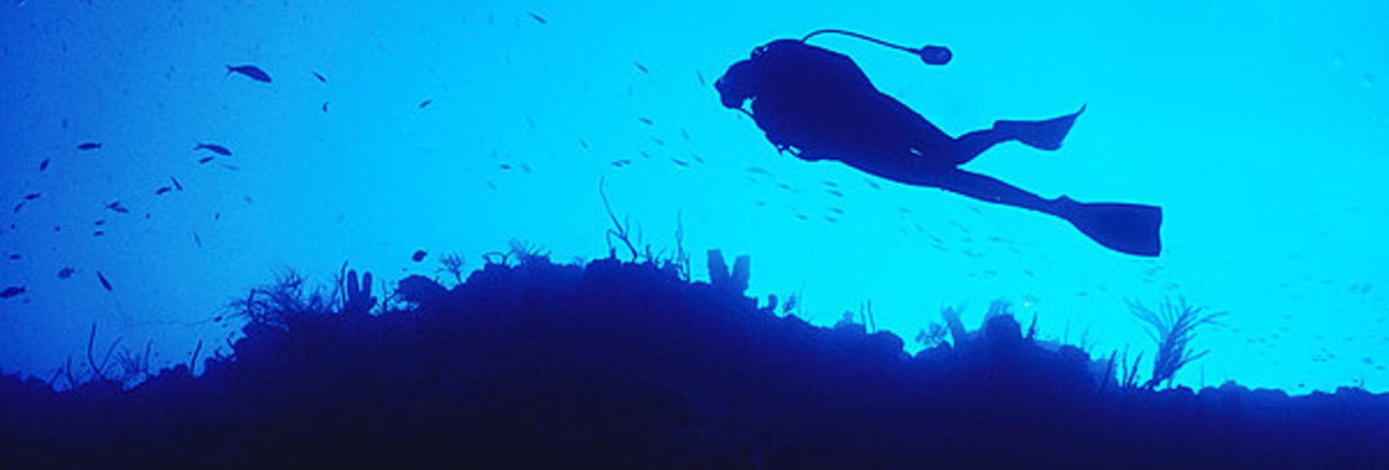 全球10大潜水胜地丨潜遍比走遍更牛X