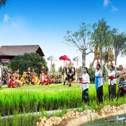 巴厘岛金巴兰RIMBA酒店图片