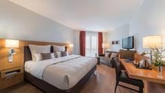 最佳西方弗里德博格瓦特级IB酒店