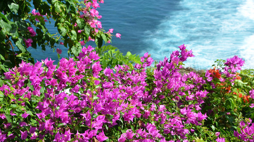 长沙直飞巴厘岛6天游