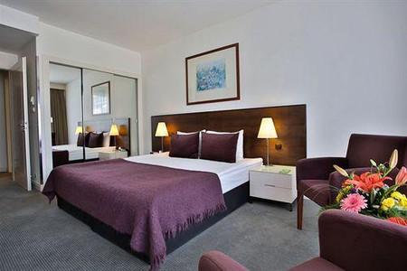 布达佩斯阿迪娜公寓酒店